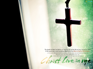Christ Live in me