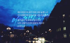 어메이징 러브