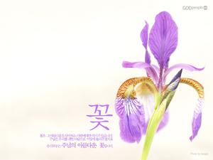 주님의 아름다운 꽃2