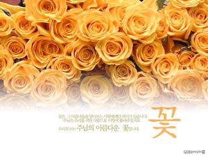 주님의 아름다운 꽃3