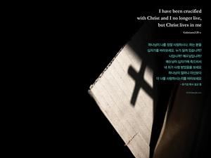 십자가를 바라보세요