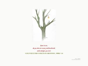 충만함 쉼