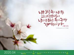 [달력] 주의 구원을 기뻐하리라