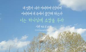 너는 하나님께 소망을 두라