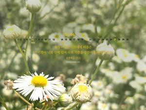 [달력] 충만한 기쁨