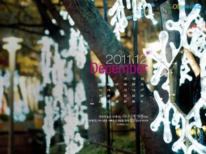 2011년 12월 달력2