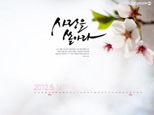 2012 5월달력1