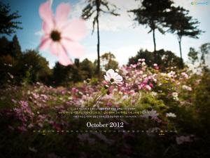 2012년 10월 달력03